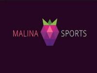 Paris sportifs Malinasports